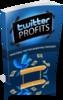Thumbnail 2010 twitter profits -PLR
